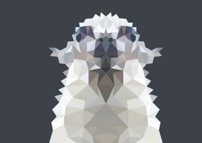 Llama = Low polygon